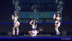 AKB Zenkoku Tour 2014 - Hokkaido (Team B).mkv - 00326