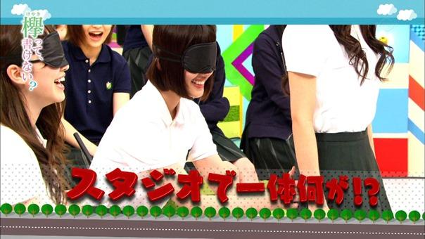 171113欅って、書けない?【漢字vsひらがな 秋の大運動会】.ts - 00113