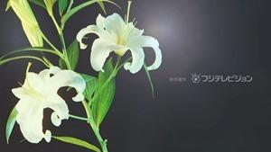 Yuri da 02.mp4 - 11;43;55.874